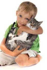 Oceanside Veterinary | Oceanside Vaccinations - Cats | CA | Oceanside Veterinary Hospital |